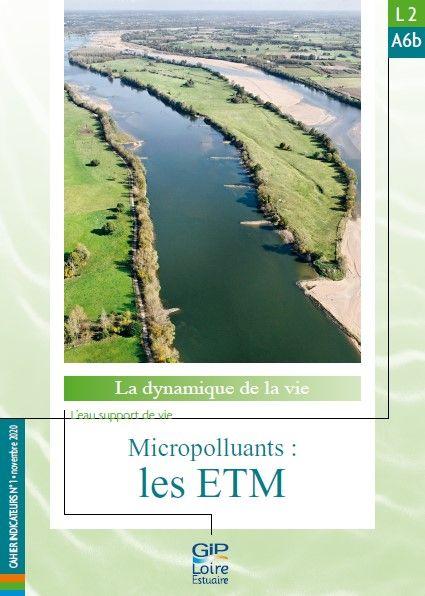 Nouvelle fiche de synthèse : L2A6b - Micropolluants : les ETM